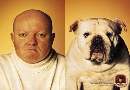 Die besten 100 Bilder in der Kategorie werbung: ähnlichkeit