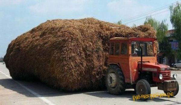 Die besten 100 Bilder in der Kategorie transport: Traktor transportiert Stroh