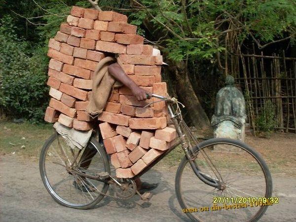 Die besten 100 Bilder in der Kategorie transport: Fahrende Mauer - Ziegelsteine mit dem Fahrrad transportieren