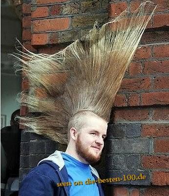 Frisuren Weltrekord Irokesen Frisur Awesome Weird An Die Besten