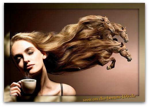 Die besten 100 Bilder in der Kategorie photoshops: gallopierende Frisur - Hair-Horses