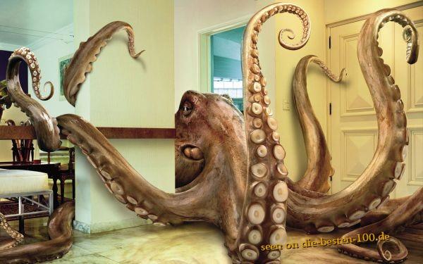 Die besten 100 Bilder in der Kategorie photoshops: Octopus Photoshop Art