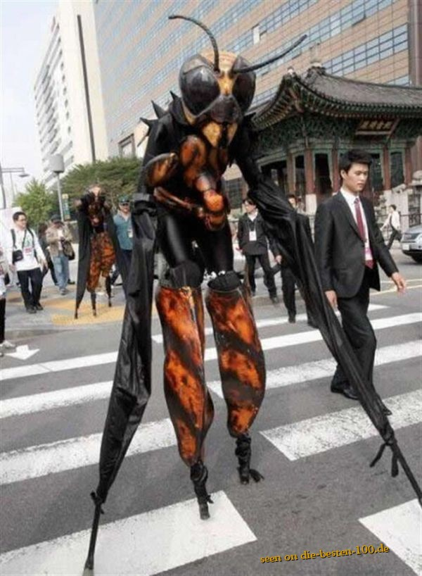 impressive Insects Dress - Wasp