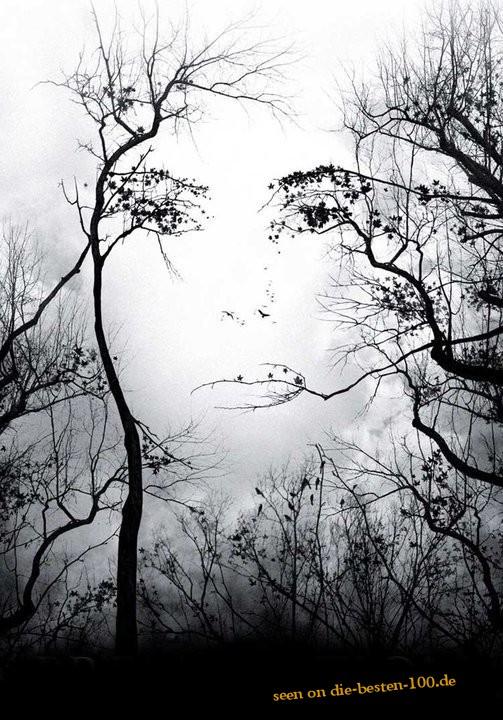 Die besten 100 Bilder in der Kategorie photoshops: Frauen Gesichts Illusion