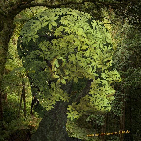 Die besten 100 Bilder in der Kategorie photoshops: Blätterkopf