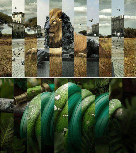 Die besten 100 Bilder in der Kategorie photoshops: Bild-Collage Löwe-Skulptur Schlange-Schlauch