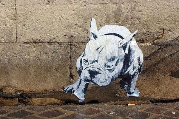 Die besten 100 Bilder in der Kategorie graffiti: Bulldog