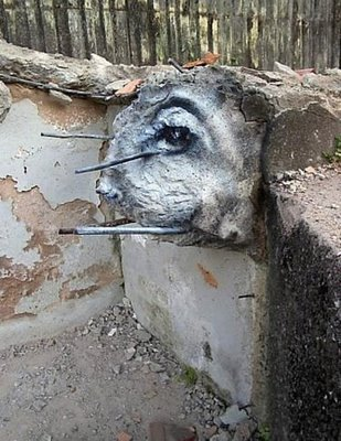 Die besten 100 Bilder in der Kategorie graffiti: Hasen-Auge Grafitti