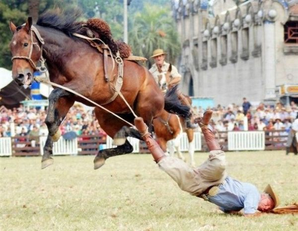 Die besten 100 Bilder in der Kategorie shit_happens: Rodeo Fail