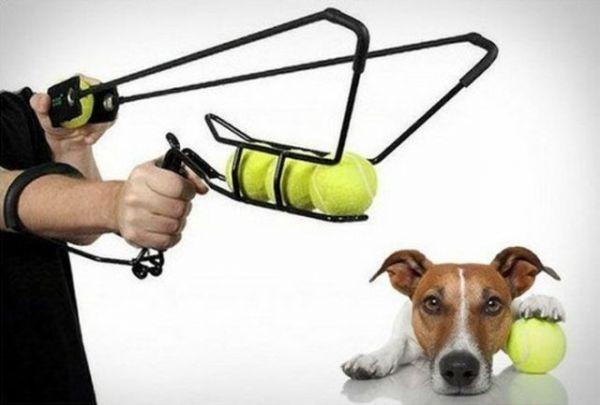 Die besten 100 Bilder in der Kategorie clever: Power deinen Hund aus - TennisBall-Schleuder