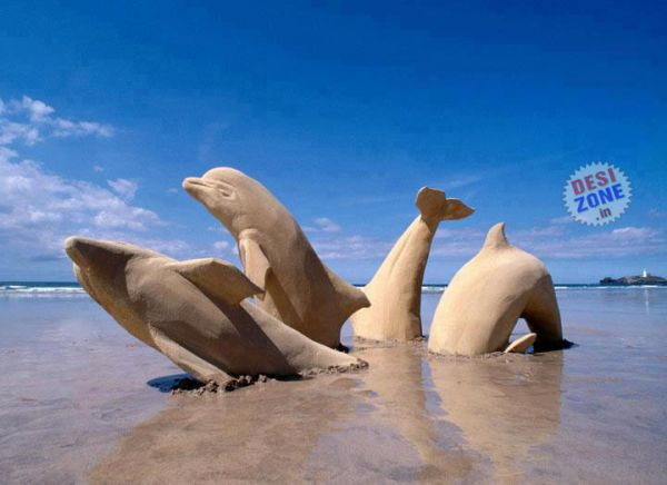 Sandy Dolphins - Amazing Sand Art