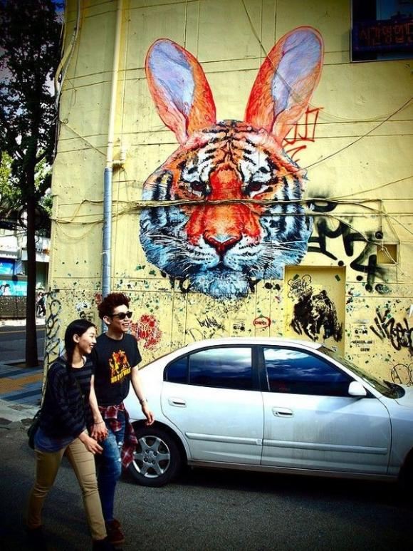 Die besten 100 Bilder in der Kategorie graffiti: Tiger-Rabbit - Grafitti Street Art