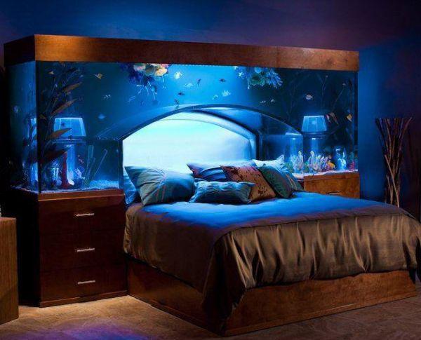 Nice Idea - Sleeping under the Fish Tank