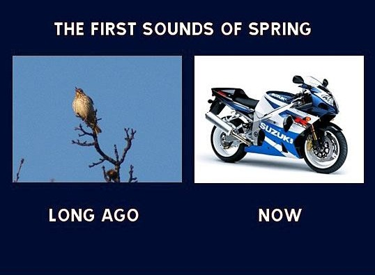 The First Sounds of Spring Long Ago and Now