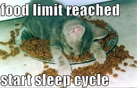 Food Limit reached - start sleep cycle