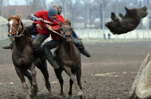 Russian Way to ride - Fighting Men and Flying Dog