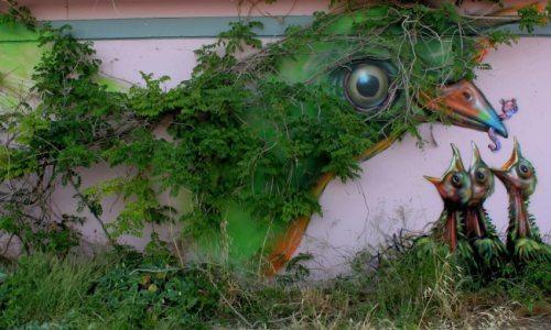 Die besten 100 Bilder in der Kategorie graffiti: Vogel, Küken, Nest