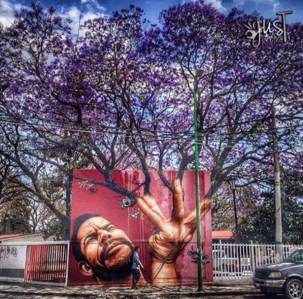 Die besten 100 Bilder in der Kategorie graffiti: Grafitti, Baum