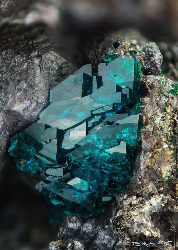 Veszelyite crystals, mineral