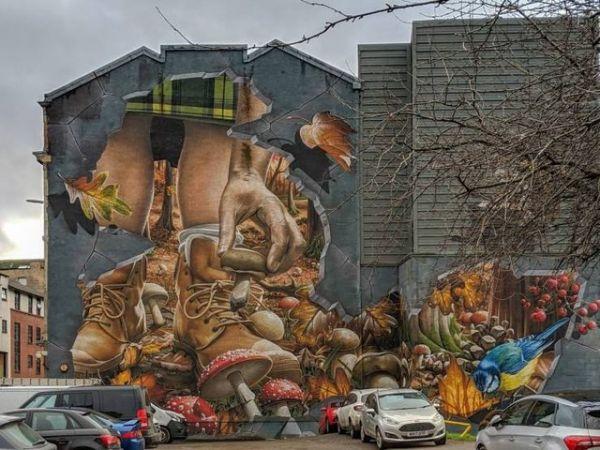 Die besten 100 Bilder in der Kategorie graffiti: Graffiti, Wald, Laub, 3D, realistisch, Pilze, Hauswand