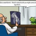 The Best Pics:  Position 94 in  - Funny  : Have a seat Kermit. What I'm about to tell you might come as big shock...