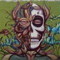 Die besten Bilder in der Kategorie graffiti: skull graffitti art