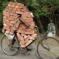 Die besten Bilder in der Kategorie transport: Fahrende Mauer - Ziegelsteine mit dem Fahrrad transportieren
