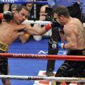 Die besten Bilder in der Kategorie sport: Flat Face Boxing Punch