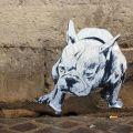 Die besten Bilder in der Kategorie graffiti: Bulldog