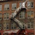 Die besten Bilder in der Kategorie graffiti: Snake-Stairs Graffiti
