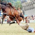 Die besten Bilder in der Kategorie shit_happens: You do it Wrong - Shit happens - Horse riding Fail