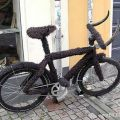 The Best Pics:  Position 47 in  - Funny  : fahrrad, fell, hörner,büffel