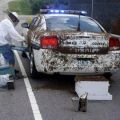 Die besten Bilder in der Kategorie Vote: Killer Bees Attack -- Sheriff Car