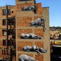 Die besten Bilder in der Kategorie graffiti: Zoo Animals Graffiti