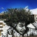 Die besten Bilder in der Kategorie graffiti: Awesome Graffiti Idea - Bush-Afro-Hairstyle Graffiti