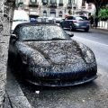Die besten Bilder in der Kategorie shit_happens: Even a Porsche can be crappy - Porsche Cabrio Bird Shit