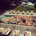 Die besten Bilder in der Kategorie Vote: Single Billionaire - inflatable dolls Pool Party