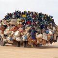 Die besten Bilder in der Kategorie transport: Transport