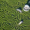 The Best Pics:  Position 9 in  - Maze, labyrinth