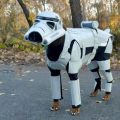 Die besten Bilder in der Kategorie Vote: Star wars, Stormtrooper, Dog Unit, Costume