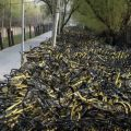 Die besten Bilder in der Kategorie Vote: Bicycle, China, crowds