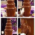 Die besten Bilder in der Kategorie Vote: Chocolate fountain, cockatoo, bird, shower