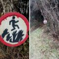 Die besten Bilder in der Kategorie Vote: zombie, shield, forest, path