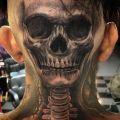 Die besten Bilder in der Kategorie Vote: Horror, skull, back of the head