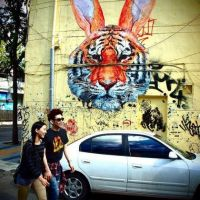 Tiger-Rabbit - Grafitti Street Art