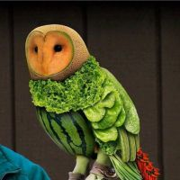 Vegeterian, Bird, Vegetable, Fruit, Owl