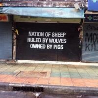 Nation, sheep, wolves, pigs