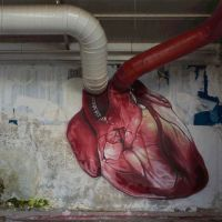 Heart, graffiti, aorta, vena cava, pipes