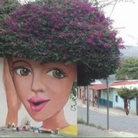 Face, hair, flowers, plant, graffiti, art